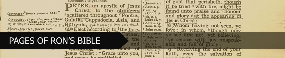Pages of Ron's Bible Banner